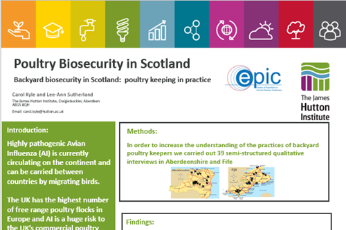 Poultry biosecurity in Scotland